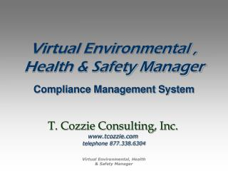 Virtual Environmental ,  Health & Safety Manager