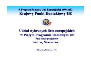 Udział wybranych firm europejskich  w Piątym Programie Ramowym UE Przykłady projektów