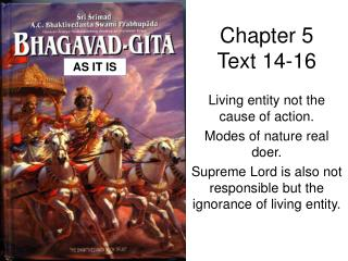 Chapter 5 Text 14-16