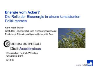 Energie vom Acker? Die Rolle der Bioenergie in einem konsistenten Politikrahmen
