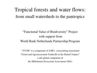 Tropical forests and water flows:  from small watersheds to the pantropics