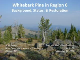 Whitebark Pine in Region 6 Background, Status, & Restoration