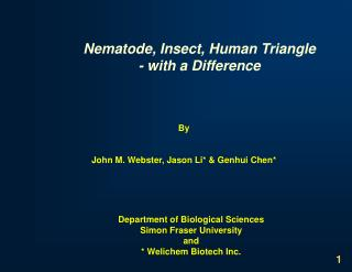 Nematode, Insect, Human Triangle - with a Difference