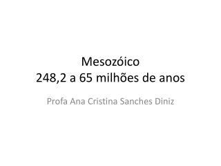 Mesoz�ico  248,2 a 65 milh�es de anos