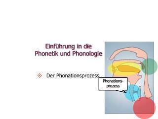 Einführung in die  Phonetik und Phonologie
