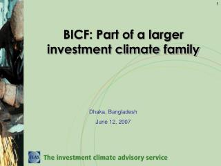 BICF: Part of a larger investment climate family