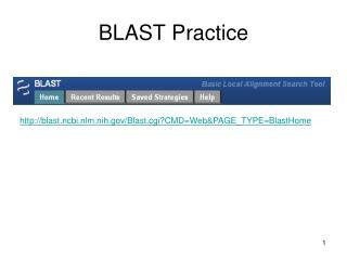 BLAST Practice