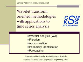 Wavelet transform oriented methodologies with applications to  time series analysis