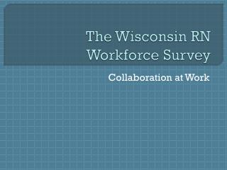 The Wisconsin RN Workforce Survey