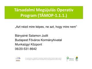 Társadalmi Megújulás Operatív Program (TÁMOP-1.1.1.)