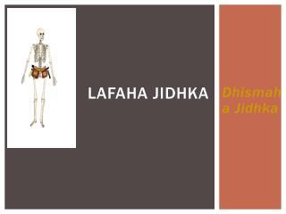 Lafaha jidhka