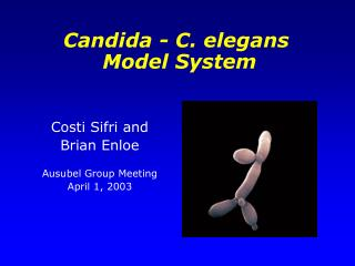 Costi Sifri and  Brian Enloe Ausubel Group Meeting April 1, 2003
