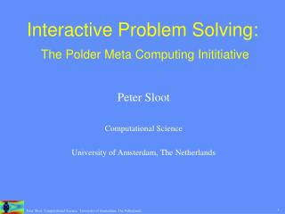 Interactive Problem Solving: The Polder Meta Computing Inititiative