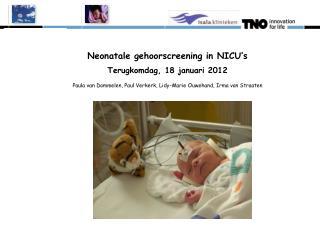 Overzicht presentatie Doel neonatale gehoorscreening in de NICU's Rol van TNO