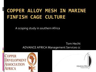 Copper Alloy mesh in marine finfish cage culture