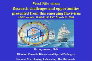 West Nile virus:  Research challenges and opportunities  presented from this emerging flavivirus