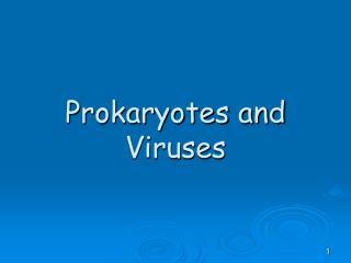 Prokaryotes and Viruses