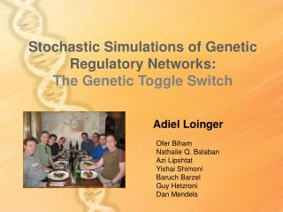 Stochastic Simulations of Genetic Regulatory Networks: The Genetic Toggle Switch