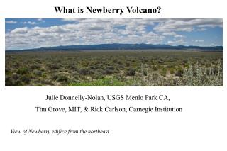 What is Newberry Volcano?