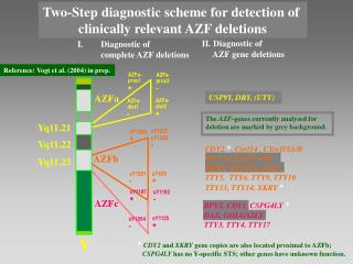 Two-Step diagnostic scheme for detection of  clinically relevant AZF deletions