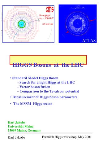 HIGGS Bosons  at  the LHC