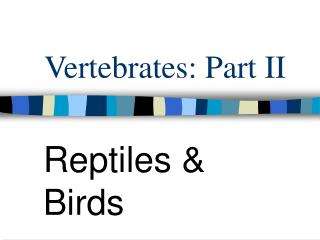 Vertebrates: Part II