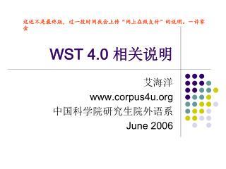 WST 4.0  相关说明