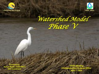 Watershed Model Phase V
