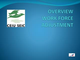 OVERVIEW WORK FORCE  ADJUSTMENT
