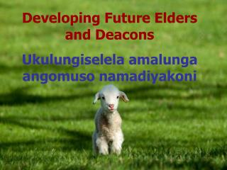 Developing Future Elders and Deacons