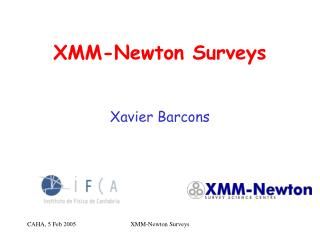 XMM-Newton Surveys
