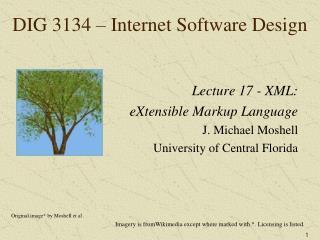 DIG 3134 – Internet Software Design