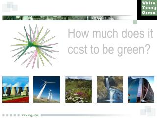 How much does it cost to be green?