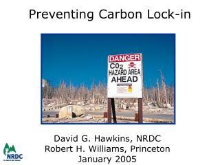 Preventing Carbon Lock-in