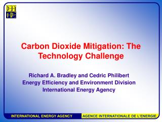 Carbon Dioxide Mitigation: The Technology Challenge
