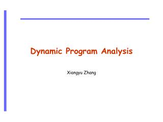 Dynamic Program Analysis