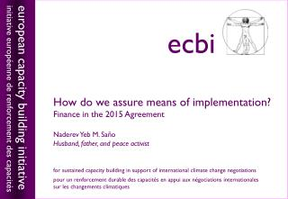 How do we assure means of implementation? Finance in the 2015 Agreement Naderev Yeb M. Saño