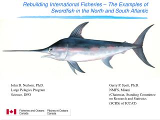 Rebuilding International Fisheries – The Examples of Swordfish in the North and South Atlantic
