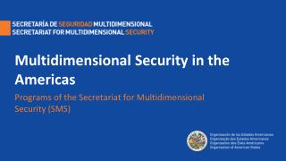 Multidimensional Security in the Americas