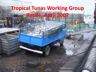 Tropical  Tunas  Working Group Recife, April 2007