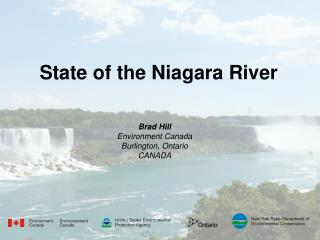 State of the Niagara River
