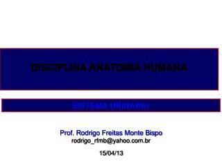 Prof. Rodrigo Freitas Monte Bispo rodrigo_rfmb@yahoo.br 15/04/13