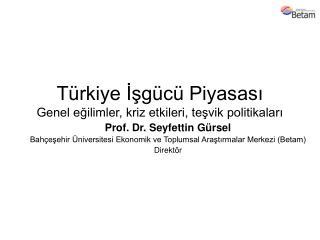 Türkiye İşgücü Piyasası Genel eğilimler, kriz etkileri, teşvik politikaları