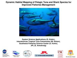 Dynamic Habitat Mapping of Pelagic Tuna and Shark Species for Improved Fisheries Management