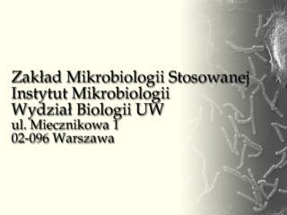 Dr hab., prof. UW Jacek Bielecki – kierownik (+22) 554 13 04   e-mail:  jbielecki@biol.uw.pl