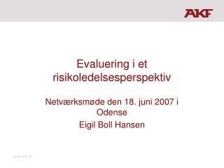 Evaluering i et risikoledelsesperspektiv