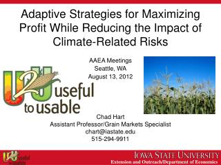 Adaptive Strategies for Maximizing Profit While Reducing the Impact of Climate-Related Risks