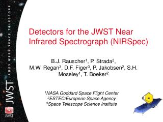 Detectors for the JWST Near Infrared Spectrograph NIRSpec