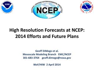 High Resolution Forecasts at NCEP: 2014 Efforts and Future Plans
