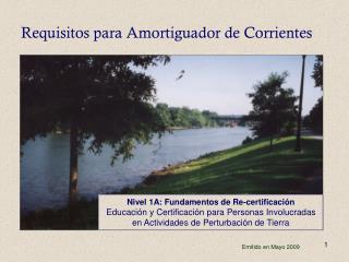 Requisitos para Amortiguador de Corrientes